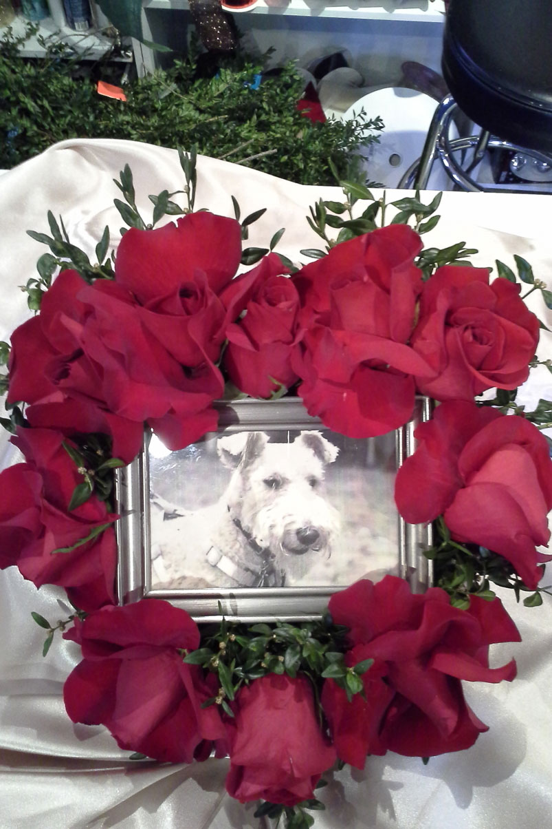 rest-in-peace-red-roses-dog-memorial