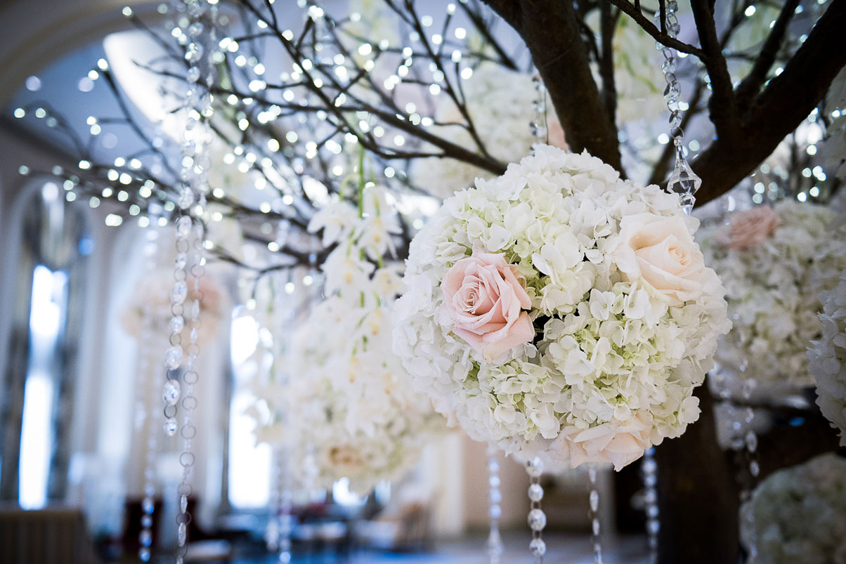 bouquets-hanging-from-tree